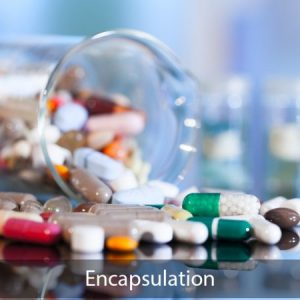 Encapsulation eTraining